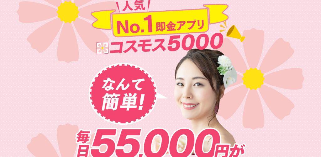 コスモス5000top